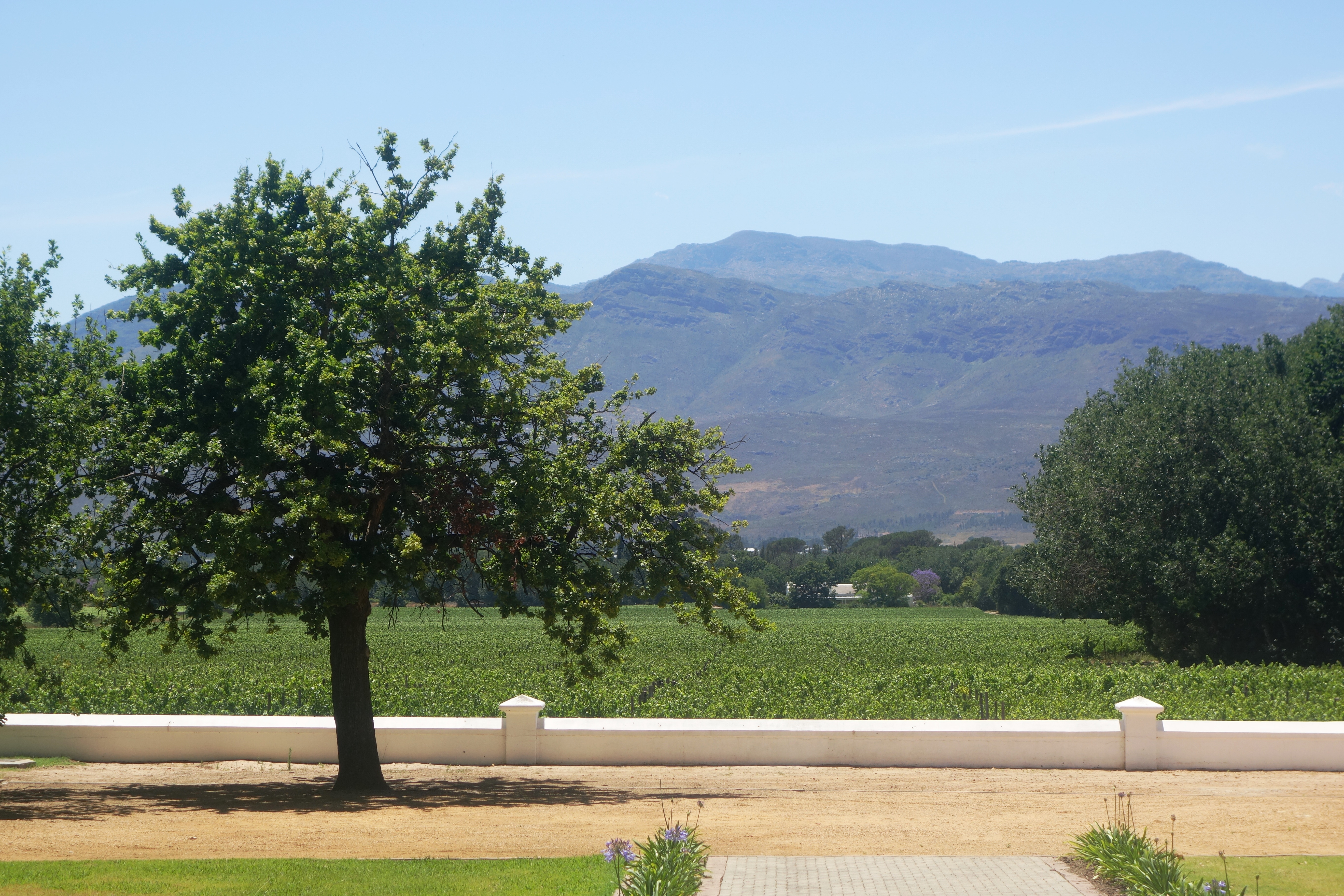Some 80 hectares of prime vineyard is set aside for making wines bearing the prestigious Plaisir de Merle label.